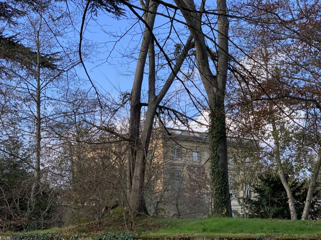 Balade à Versailles et Trianon au temps du Covid  Ac542310
