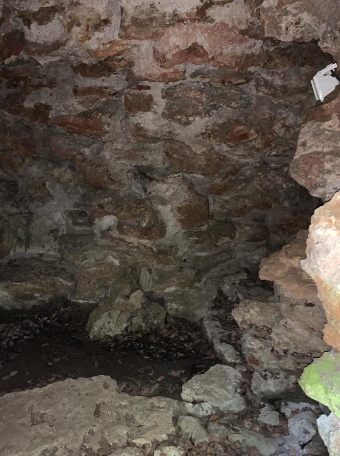 La grotte du Hameau de Marie-Antoinette Captu234