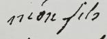 Testament / Lettre de Marie-Antoinette à Madame Elisabeth, le 16 octobre 1793 - Page 2 Captur50