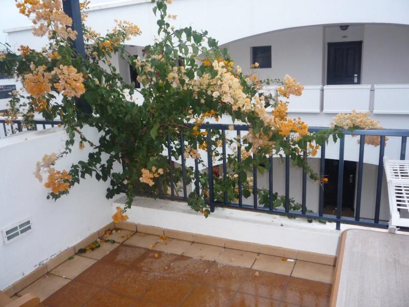 Canary Islands, Lanzarote, Playa Blanca, 2010, Airport, Aeroplane and the Thomson Dream 02810