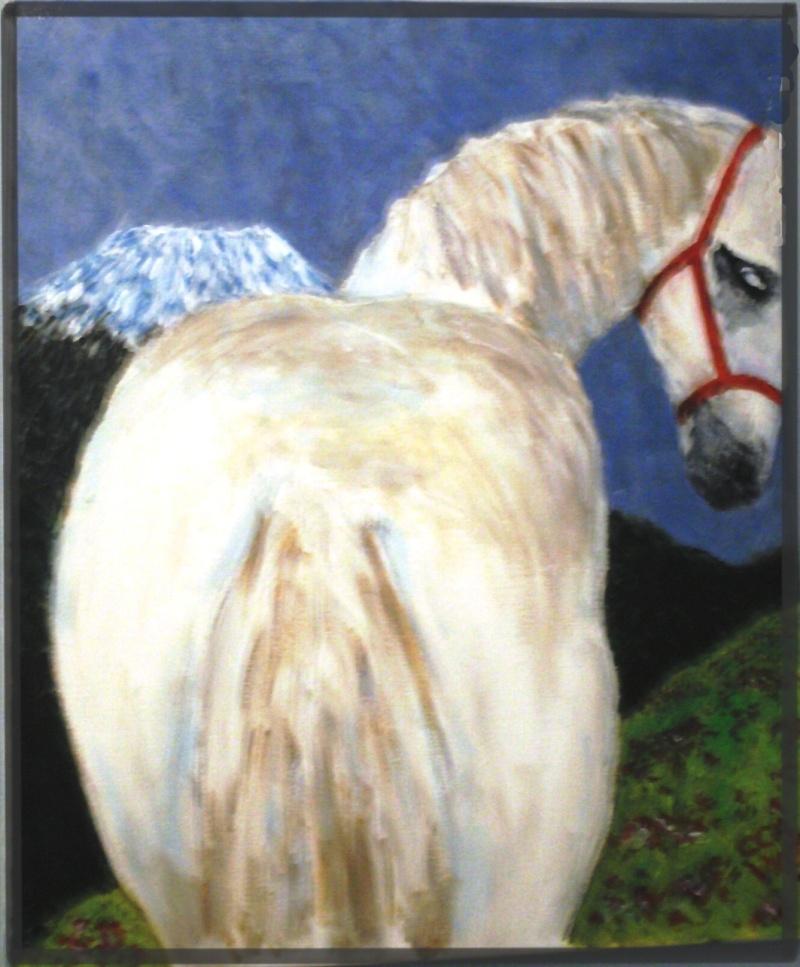 les fesses de votre cheval ;) (septembre ) Pict0010
