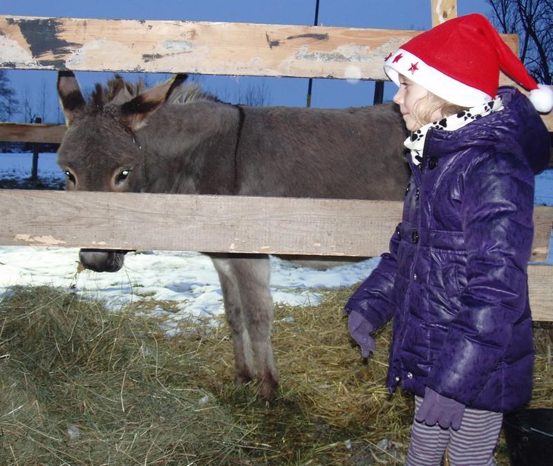 """Les sentiers de Noël à Osthouse ou """"Mei au pays des merveilles"""" Osthou12"""