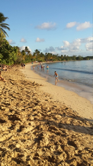 [Campagne] ANTILLES - Page 10 20190110