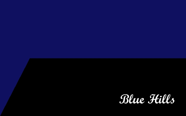 The Republic of Virginia Blue10