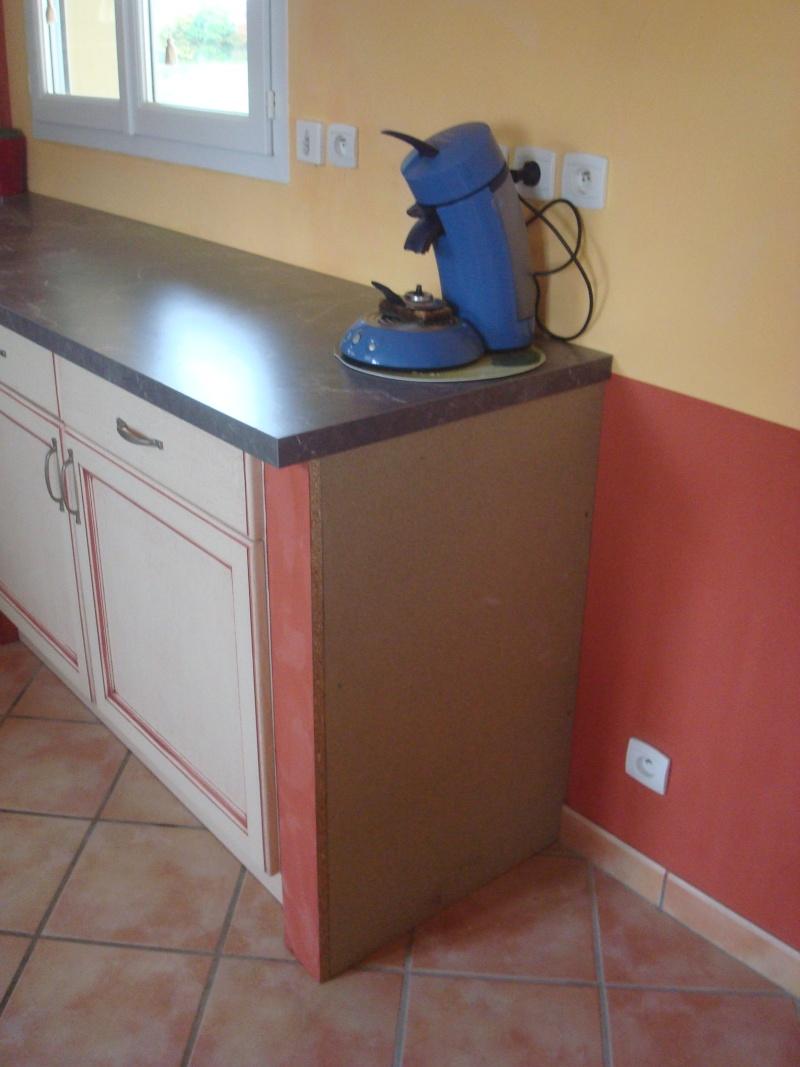 modernisation de cuisine Dsc01712