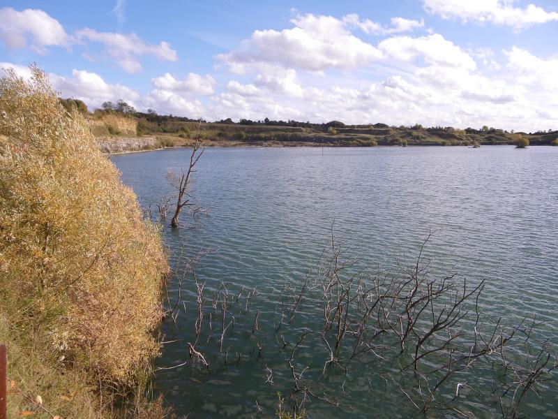 l'étang de Fresville Imgp1311