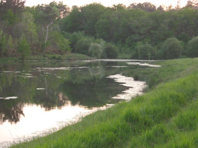 recherche infos sur lac alias-sigalens (bordeaux rive droite) Img_1010