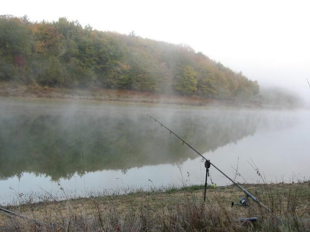 recherche infos sur lac alias-sigalens (bordeaux rive droite) Img_2010
