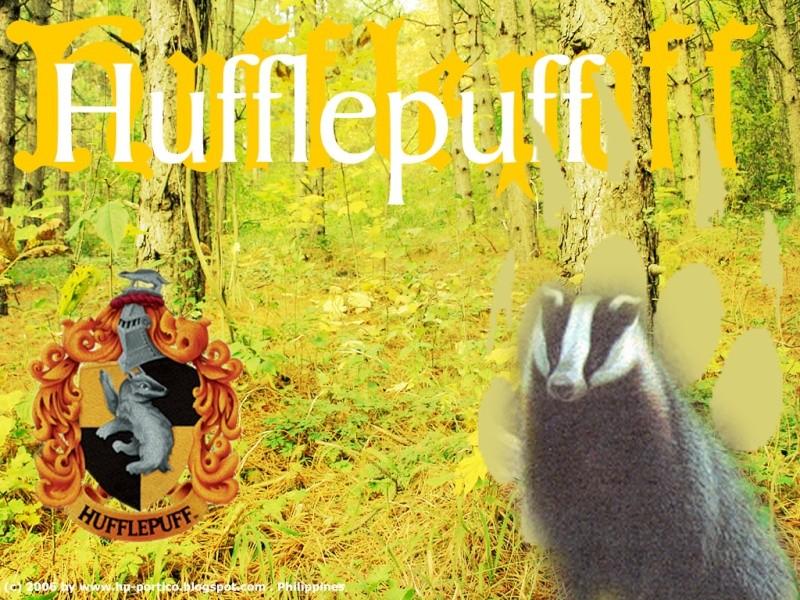 Hufflepuff Common Room Huffle10