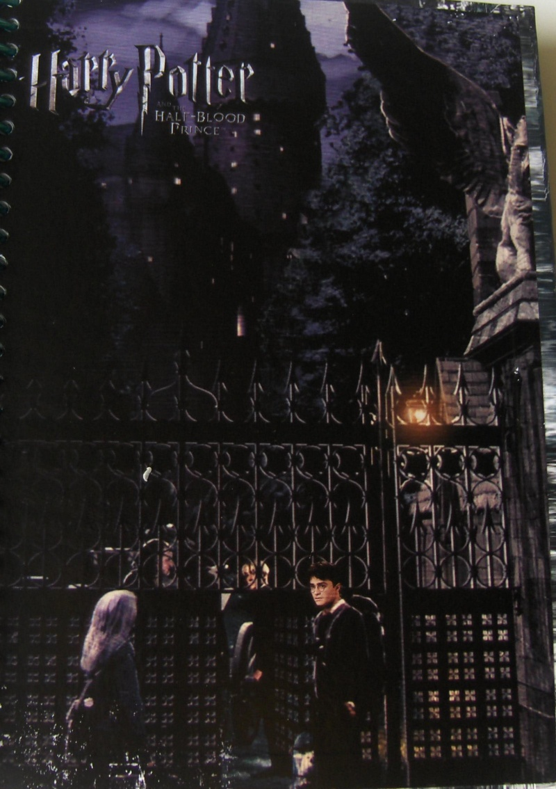 The Gates Outside of Hogwarts Scanag10