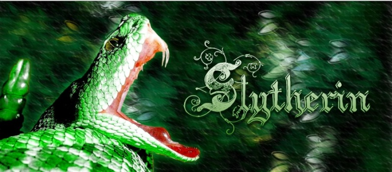 Slytherin Common Room Slythe11