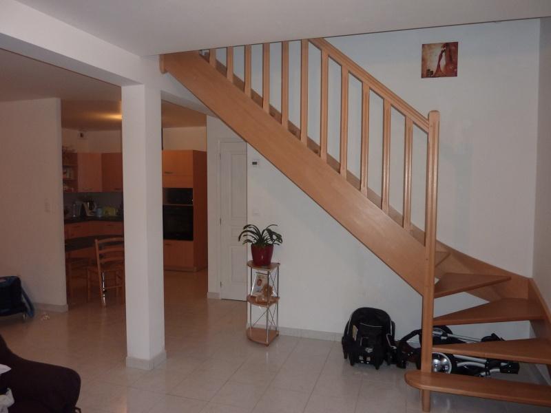 Déco salon/cuisine/cage d'escalier P1000411