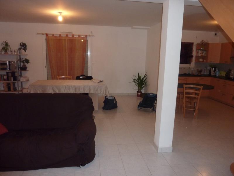 Déco salon/cuisine/cage d'escalier P1000413