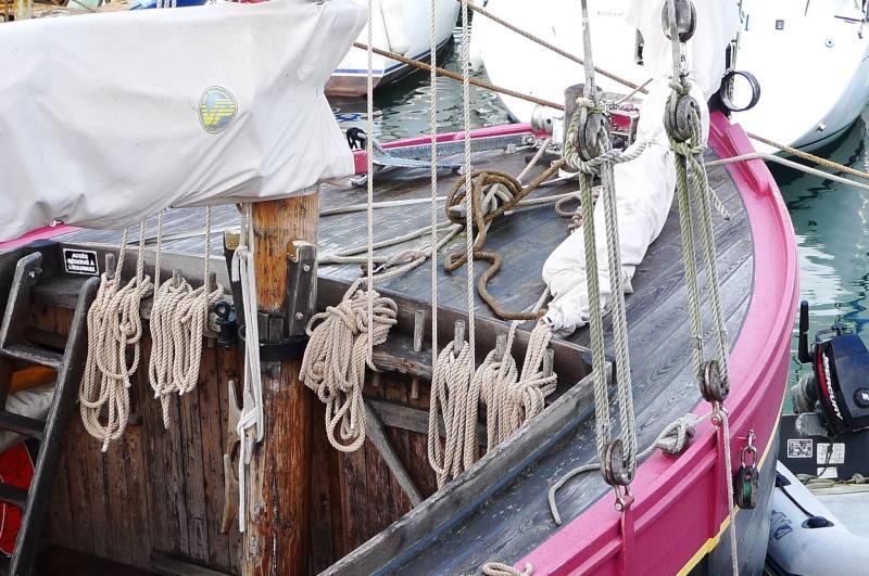 Paimpol et son port en côtes d'Armor : bienvenue en BRETAGNE nord P1080114