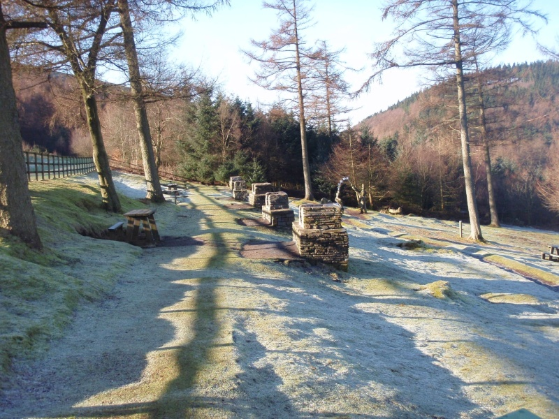 twmbarlwm and cwmcarn forest drive,walks/picnic sites P3011916