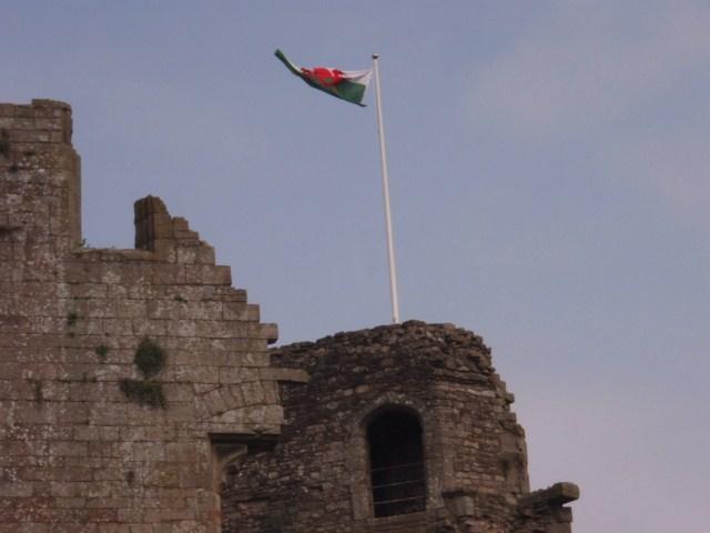 raglan castle P5252818