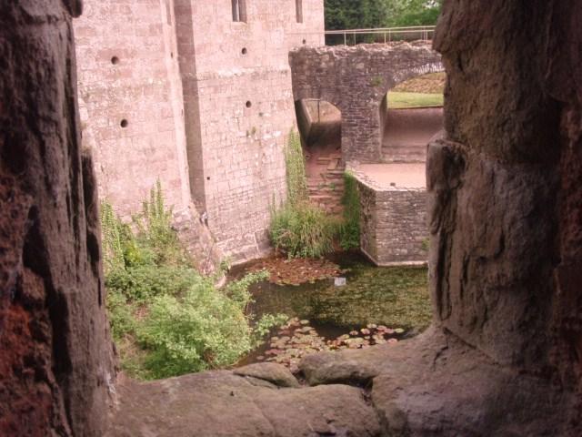 raglan castle P5252913