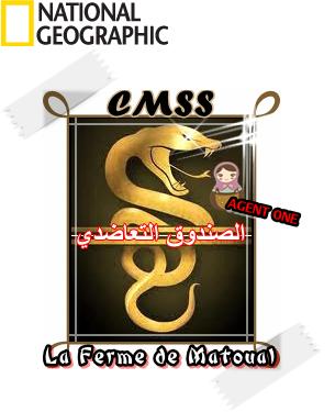 Création d'un logo pour la CMSS 06-03-10