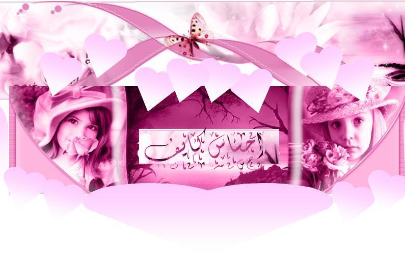 www.kalil-alshehri.com