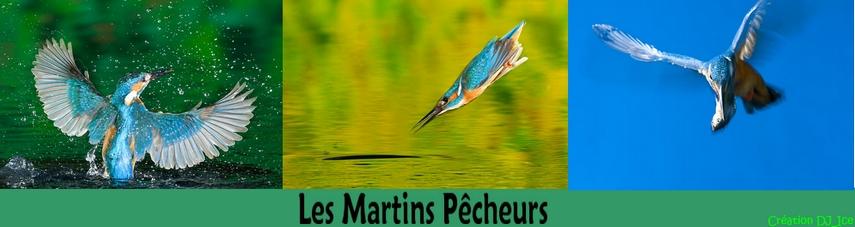 Les Martins Pêcheurs