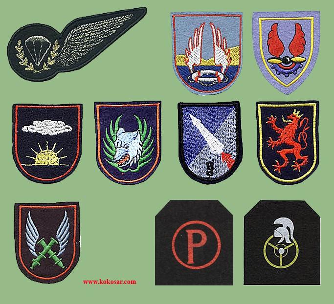 Belgian Army Insignia Belvo310