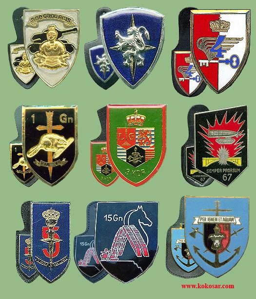 Belgian Army Insignia Belvoj11