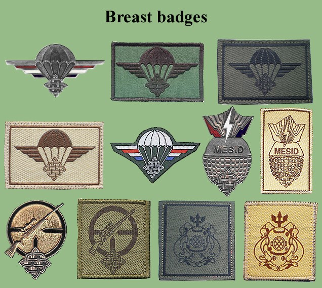 Croatian armed forces insignias Cro-oz10