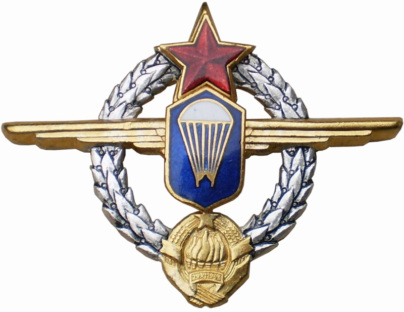 YNA paratroopers and pilots breast badges P3261511