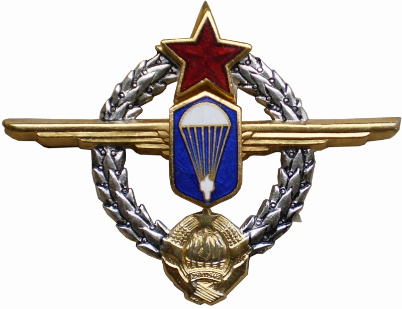 YNA paratroopers and pilots breast badges P3261512
