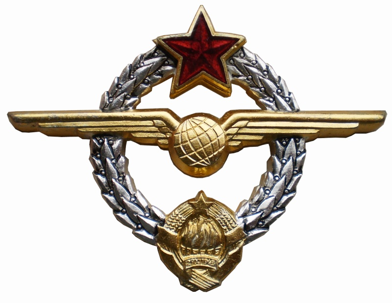 YNA paratroopers and pilots breast badges P3261514