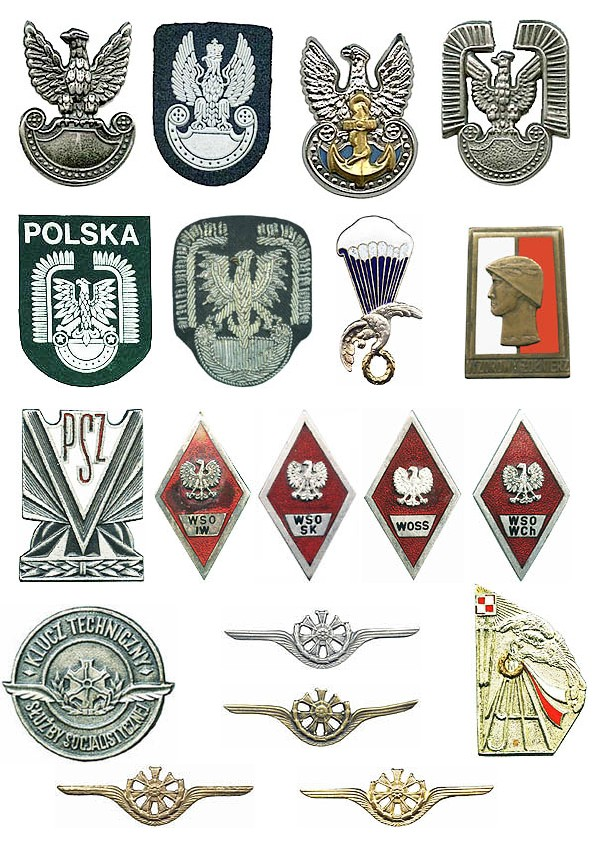 Polish military insignias from my collection Polska10