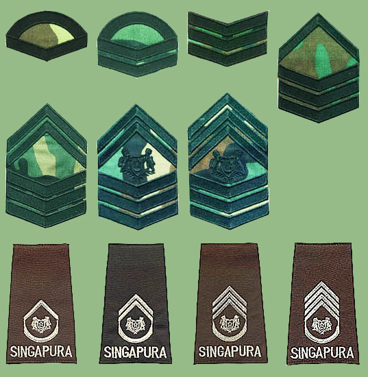 Singapore Armed Forces insignias Singap13