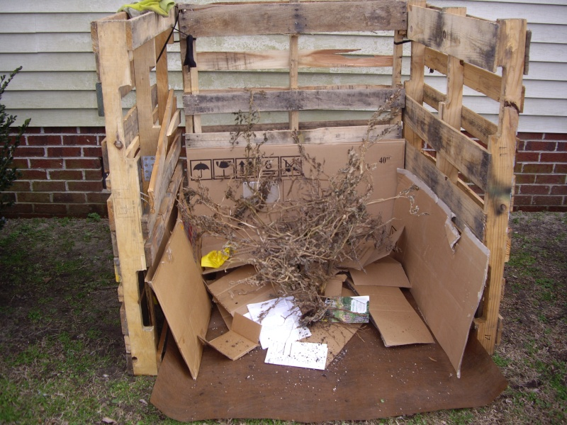 $18 compost bin - Page 2 Imgp1116