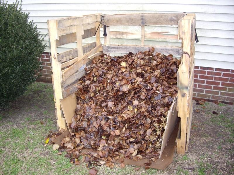 $18 compost bin - Page 2 Imgp1117