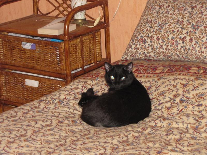 Fourmiz et Emirah 2011-012