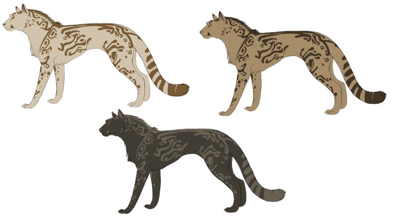 Belorianske skapninger Kitty410