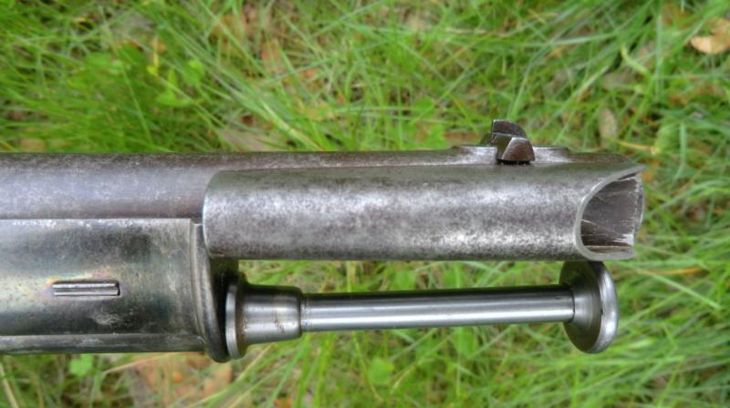 Un petit suisse Cimg1344