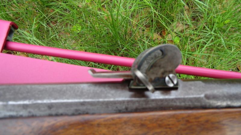 Un petit suisse Cimg1345