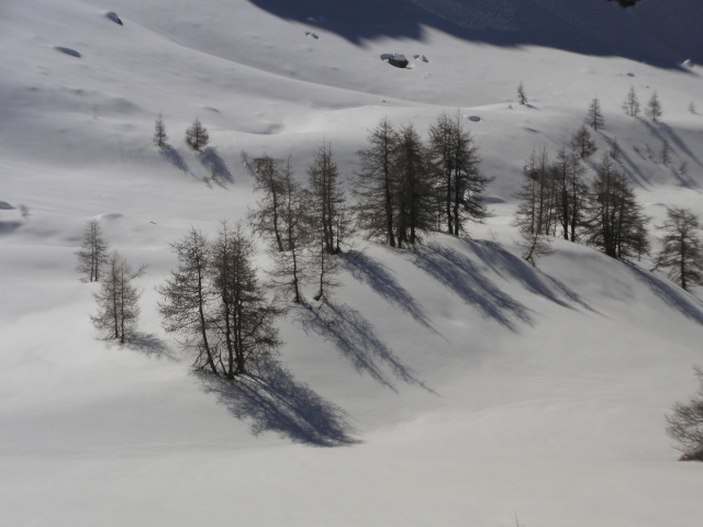 nouvelle de la (vielle)neige.... à la Madonne Sany0116