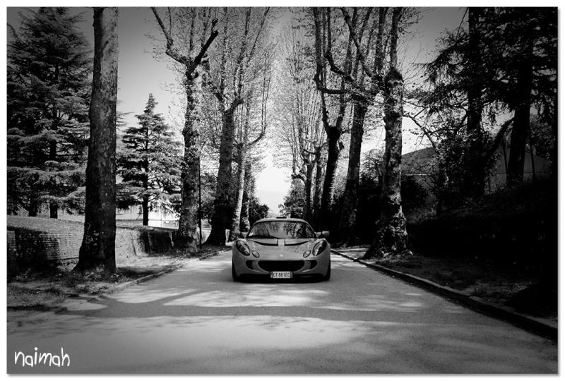 LD's Photo Blog - Pagina 2 Img_5811