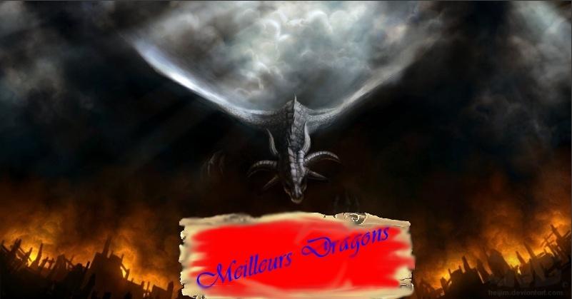 Les Meilleurs Dragons de Transformice !