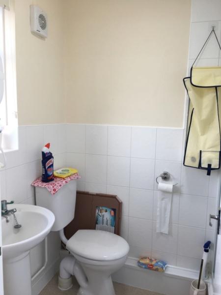 Updating the Bathroom Img_1112