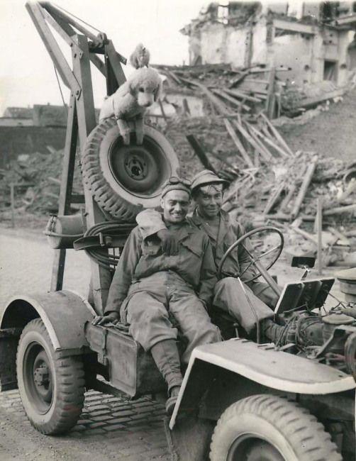 Diverses photos de la WWII - Page 3 10528