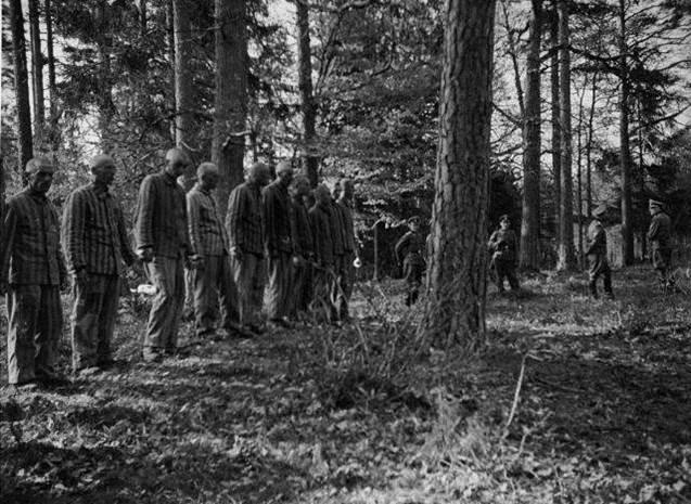 Diverses photos de la WWII - Page 40 105410