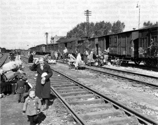 Diverses photos de la WWII - Page 9 11116
