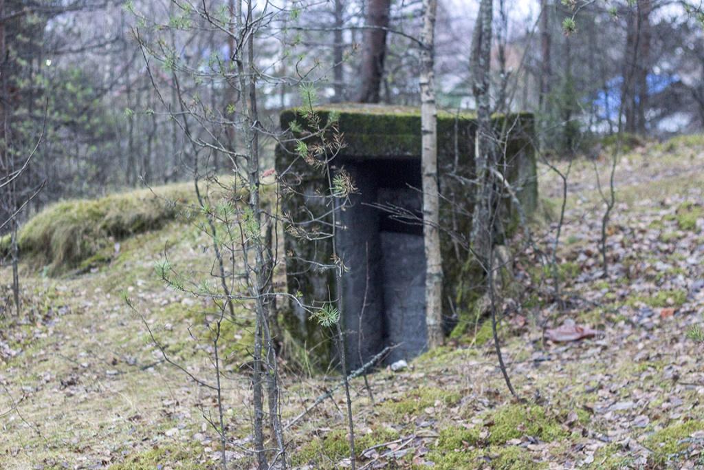 Blockhaus en Russie 11132