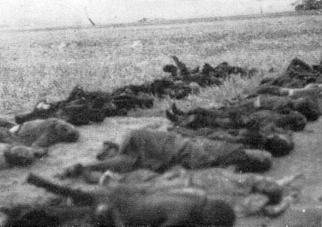 Diverses photos de la WWII - Page 6 14819