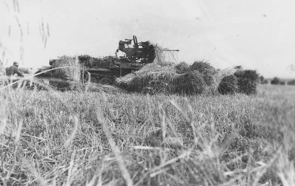 Diverses photos de la WWII - Page 26 16814