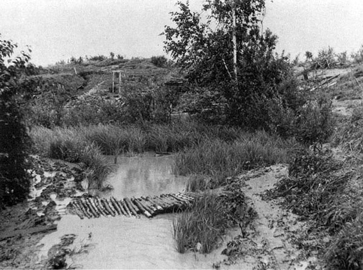 Diverses photos de la WWII - Page 3 18314