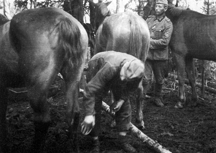 Diverses photos de la WWII - Page 3 18415